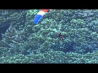Raw Video: Former President George Bush Skydives For 90th Birthday