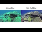 GoPro Hero 3 Flip Filter by Backscatter HD Fishing video