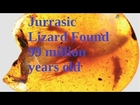 99 million year old Amber-trapped lizard fossils reveal |LOST WORLD|