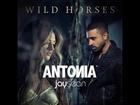 Antonia feat. Jay Sean - Wild Horses (Original Radio Edit)